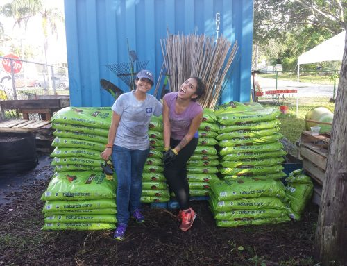 Volunteering with the Miramar Community Garden