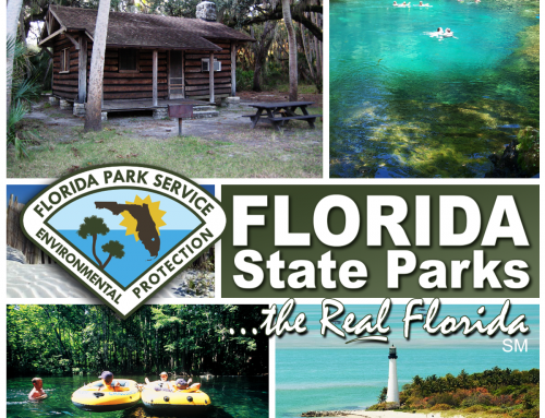 Free Admission to Florida State Parks this Veteran's Day!